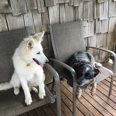 Hina & Tully