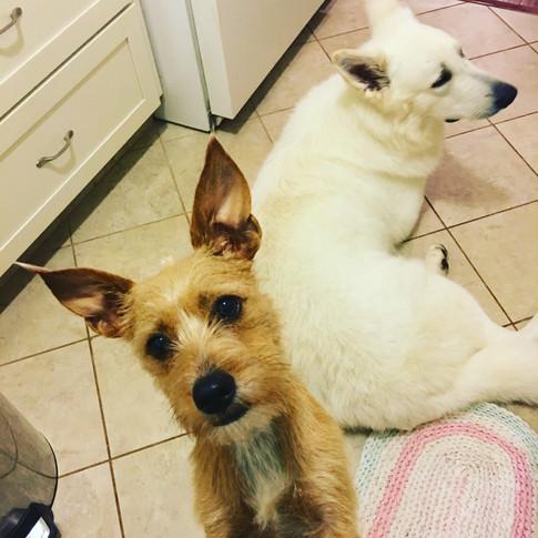 Izzy & Georgie