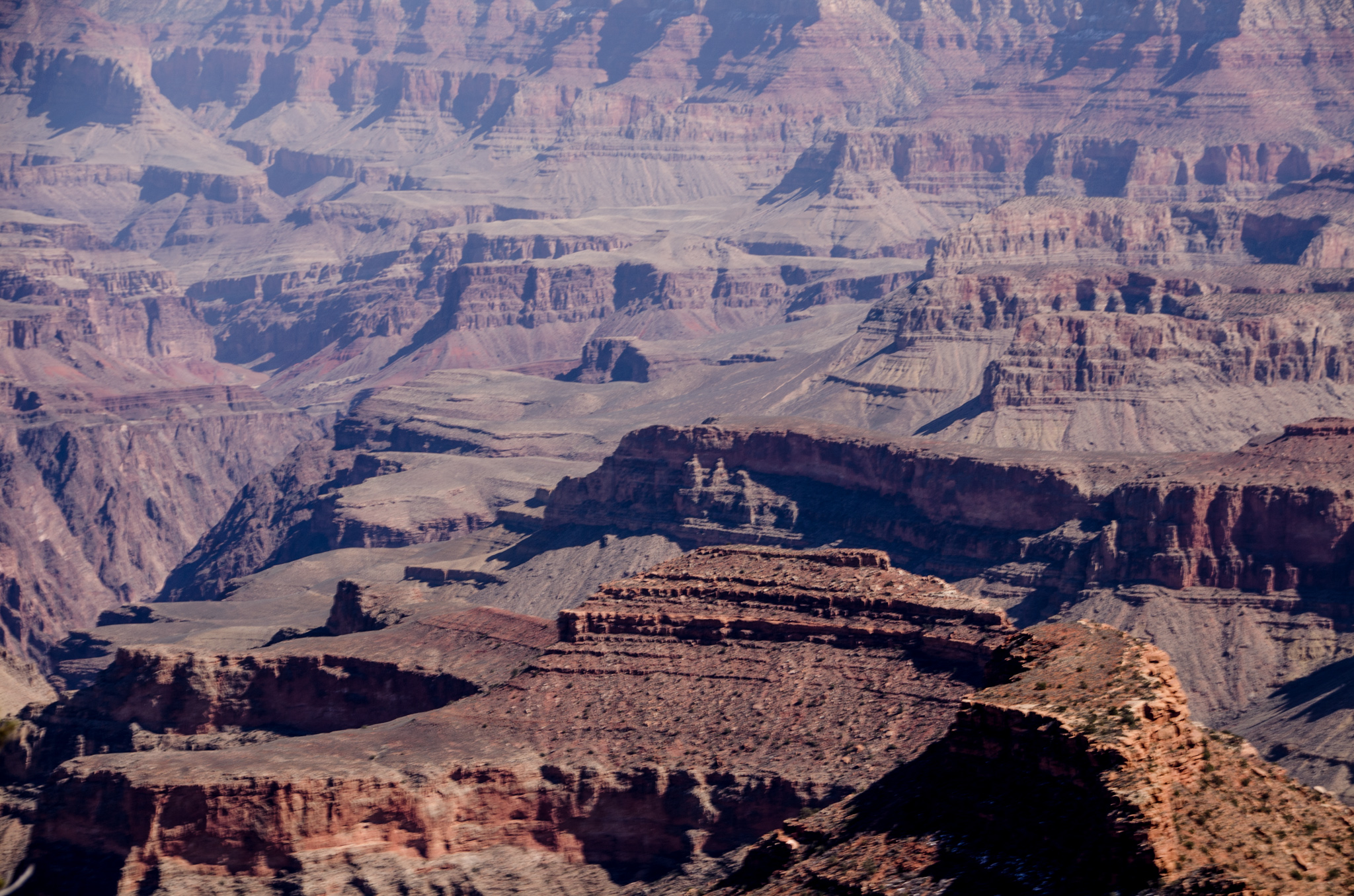 2015-03-07 - Grand Canyon Mule Ride - 059