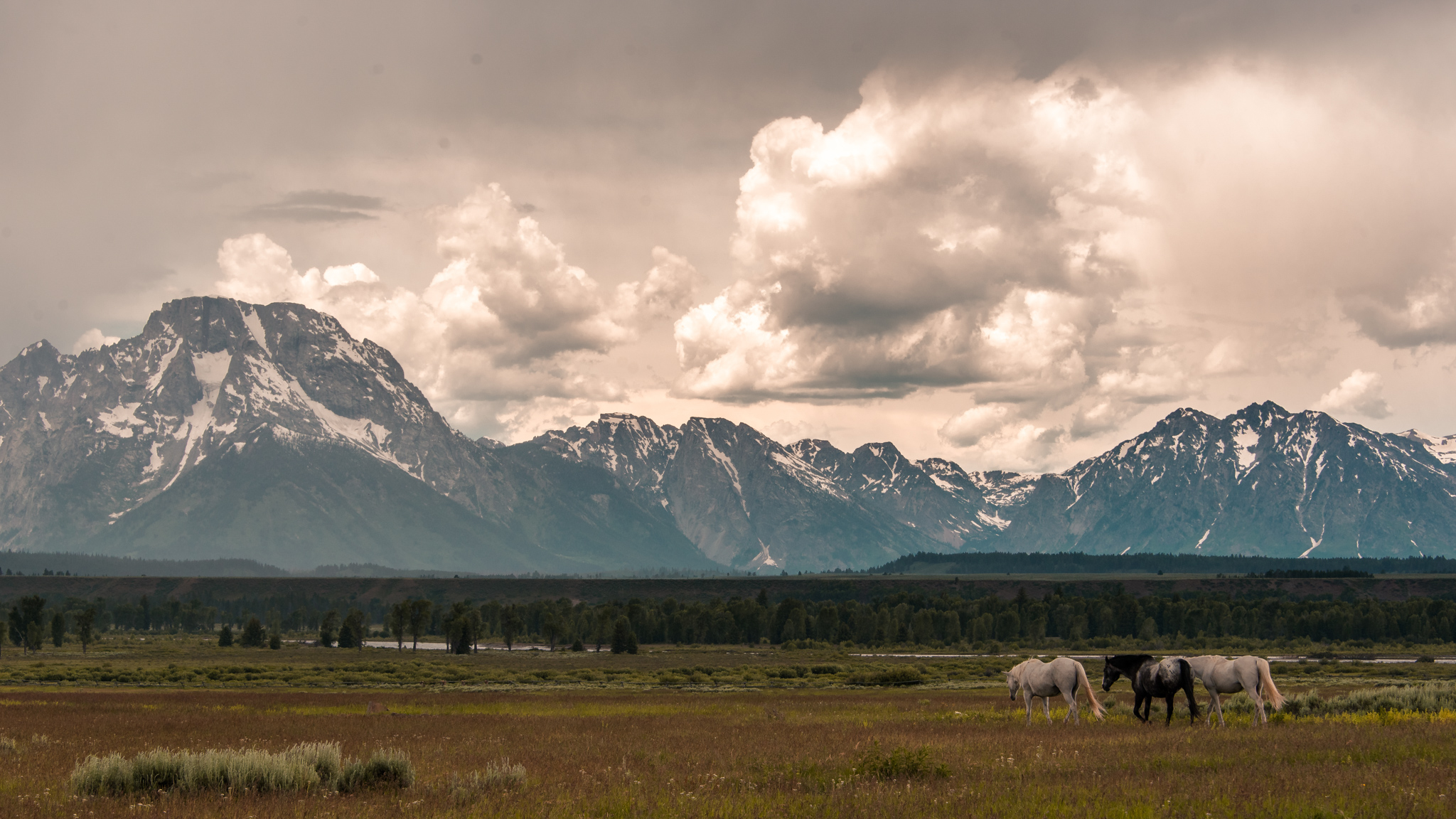 2017-07-02 - Grand Tetons Loop Tour - 071