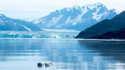 2017-08-09 - Hubbard Glacier - 056