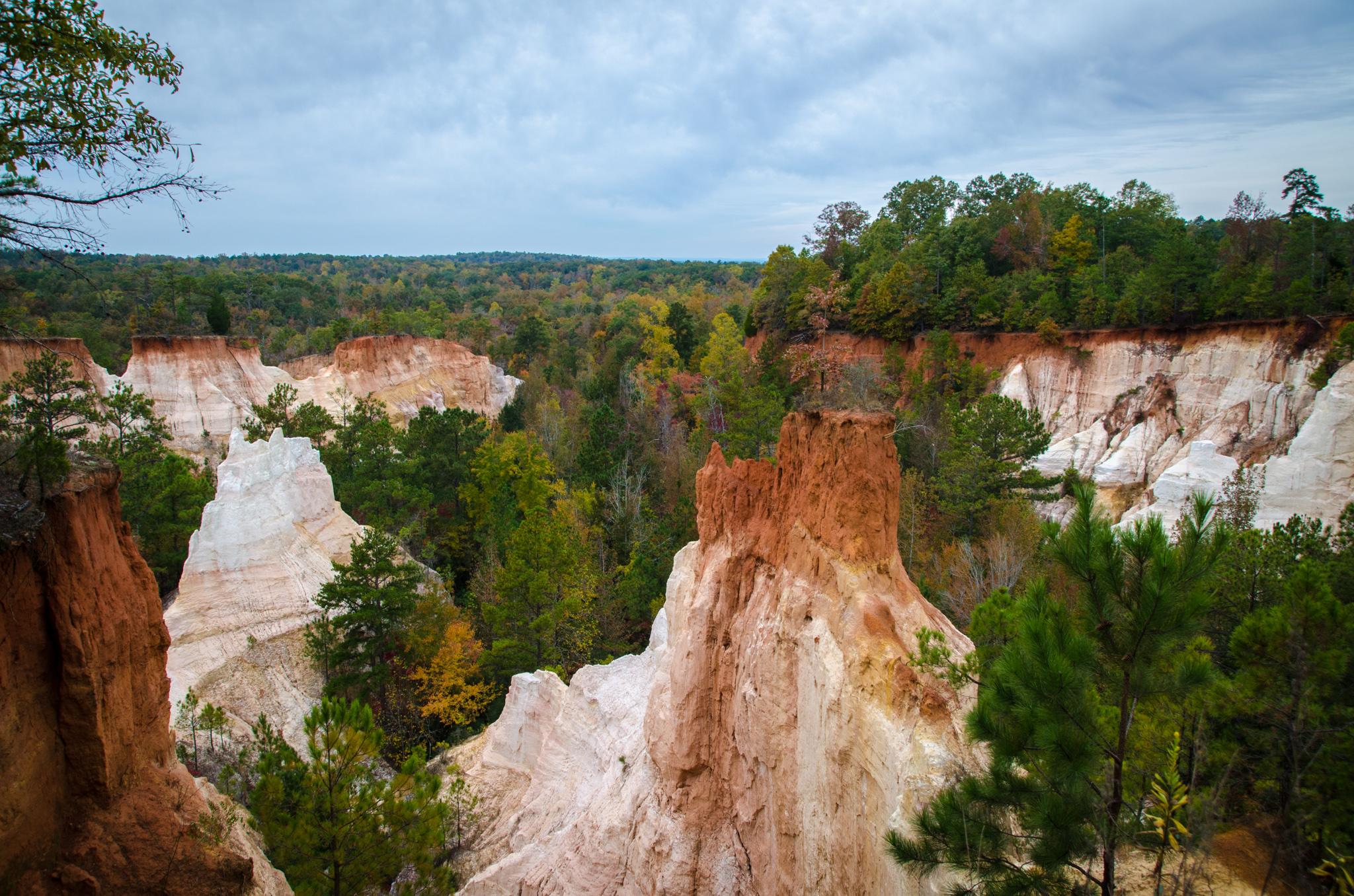 2014-11-08 - Providence Canyon - 059