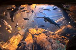 2012-08-25 - Georgia Aquarium - 046