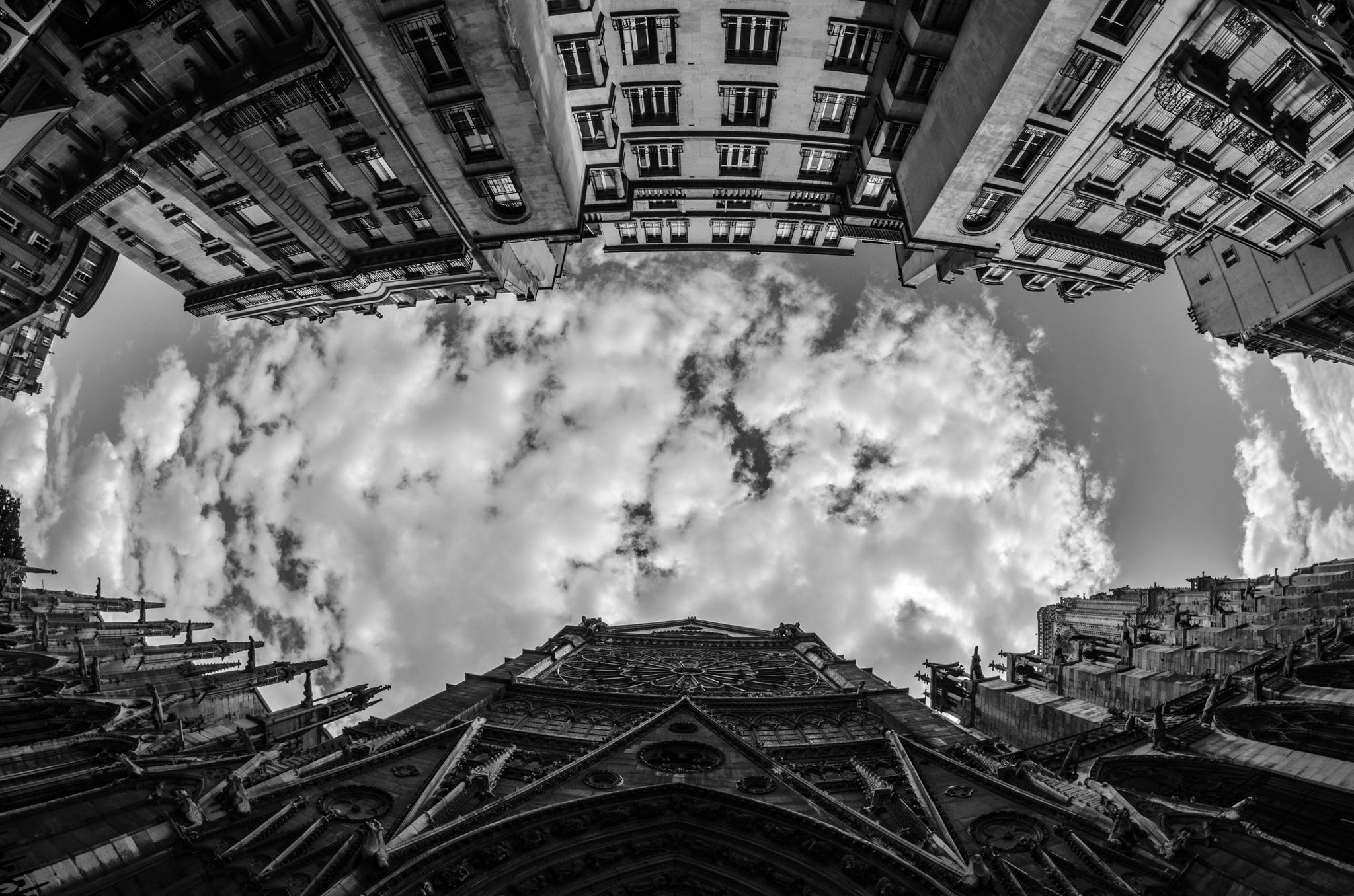2015-07-29 - Jamritha Honeymoon - 002 - Cathedrale Notr-Dame de Paris - 078