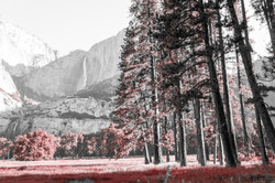 2016-07-03 - Yosemite Valley - 068-1