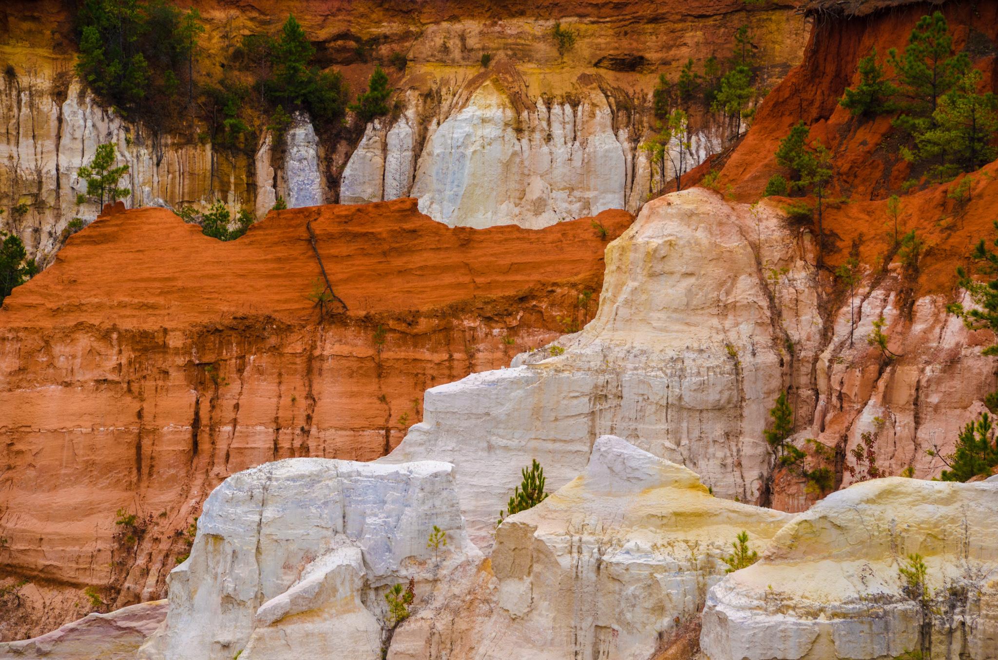 2014-11-08 - Providence Canyon - 077