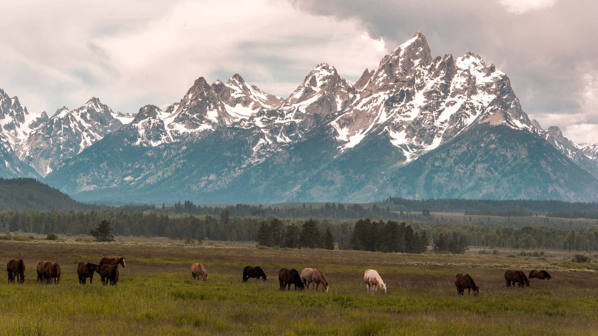 2017-07-02 - Grand Tetons Loop Tour - 076