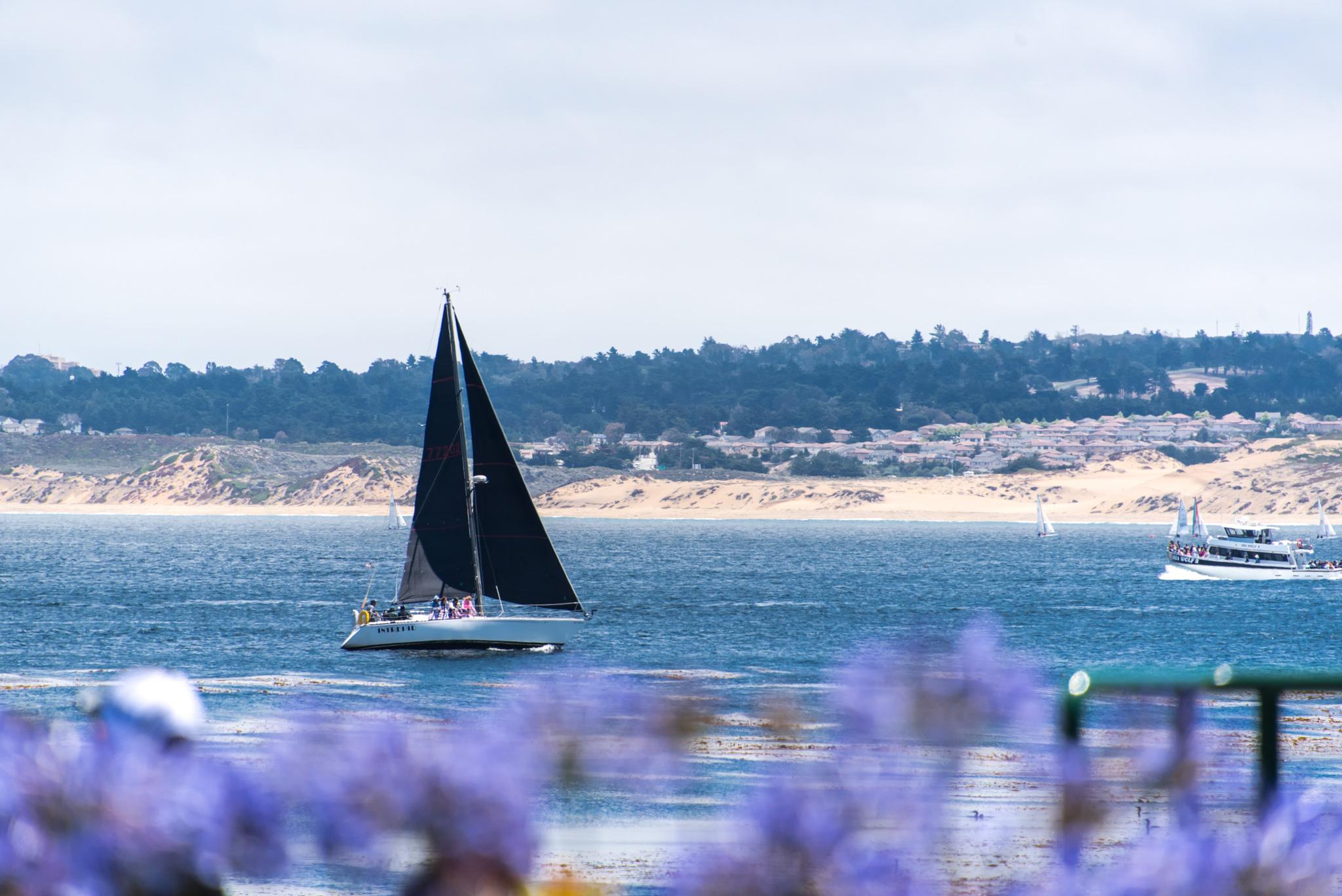 2016-07-04 - Groveland To Monterey To Carmel - 018