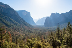 2016-07-03 - Yosemite Valley - 079
