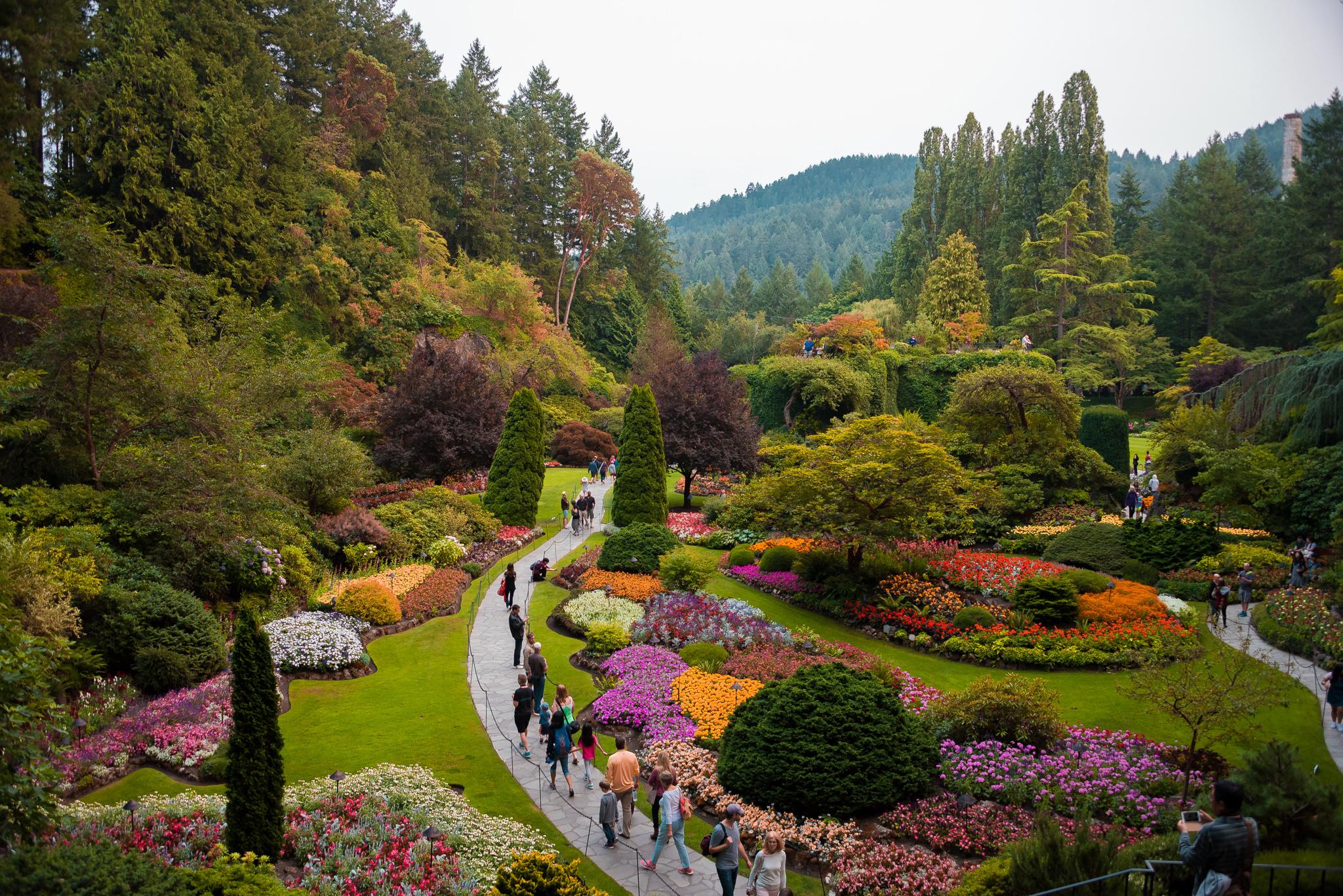 2017-08-05 - Butchart Gardens - 019