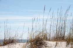 2015-02-07 - American Roadtrip Day 2 - Pensacola - 058