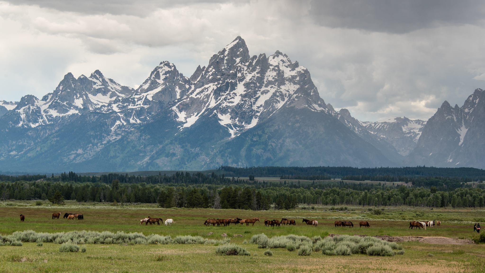 2017-07-02 - Grand Tetons Loop Tour - 053