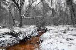 2014-01-28 - Snowfall In Suwanee - 079