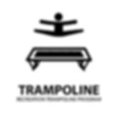 Rec-Tramp Badge-01.png