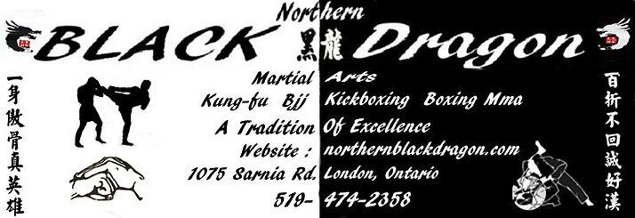 Northern Black Dragon Martial Arts