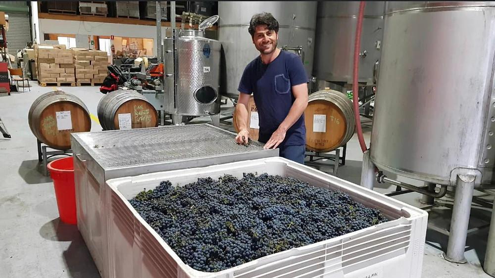 Man making wine
