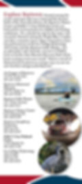 Tourism Brochure 2.JPG