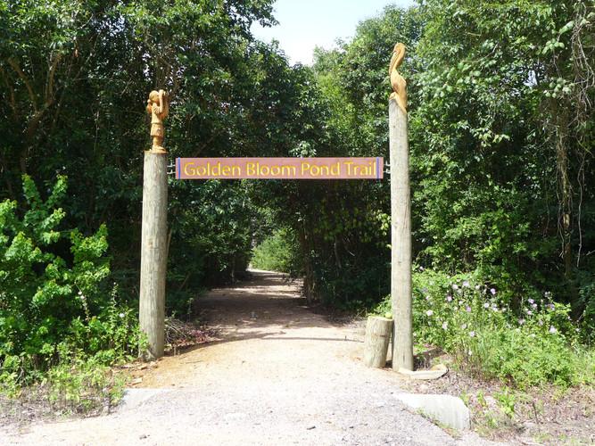 Baytown Nature Center Trail 2