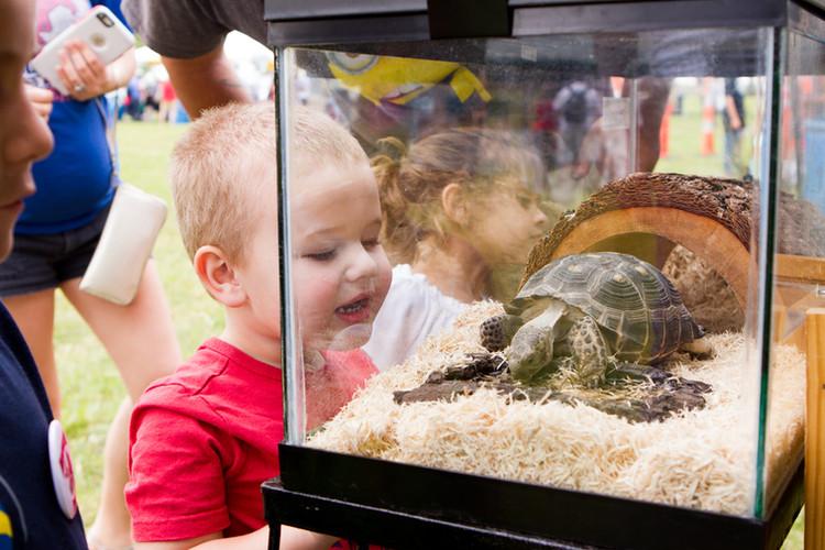 Nurture Nature Fest