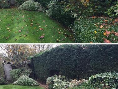 Autumn Garden Maintenance