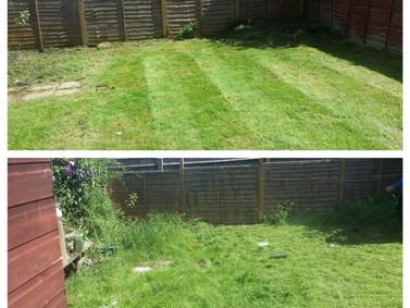 Small Garden Tidy ups