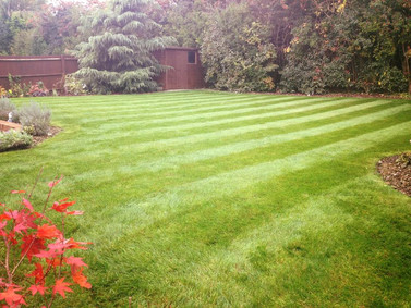 Providing lawn care all year round