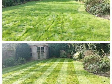 Garden Maintenance: February 2016 (4)
