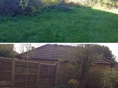 Garden Clearance Work