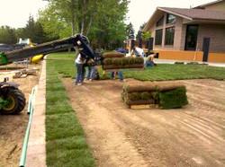 Back Yard Upgrade