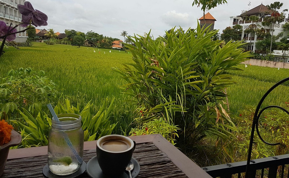 Ubud Bali wellness retreat