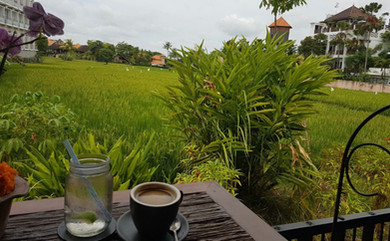 Ubud Bali wellness retreat