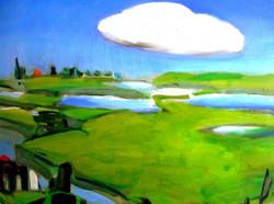Polder met wolk