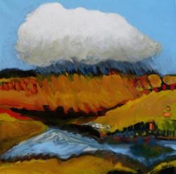 Polder met regenwolk