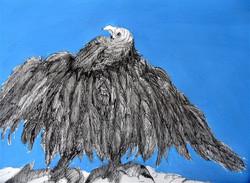 Verbaasde vogel