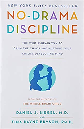 No-Drama Discipline by Daniel Siegel and Tina Payne Bryson
