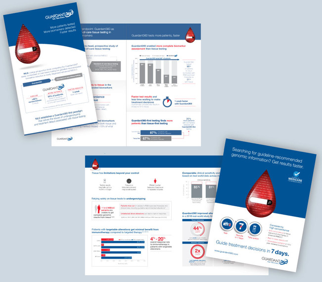 NILE Promo Brochures