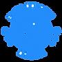 Logo BDO 100px.png