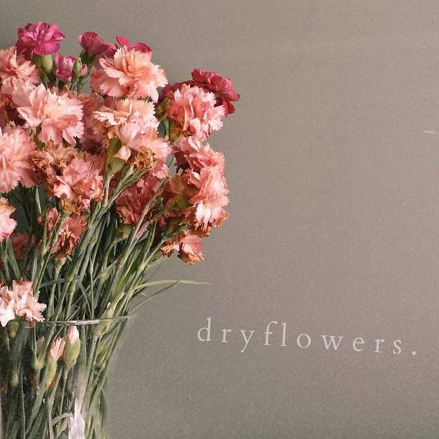 dryflowers.jpg