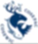 Cosewic logo.PNG