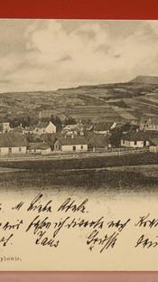 Widok z Zofinowa - 1906 r.