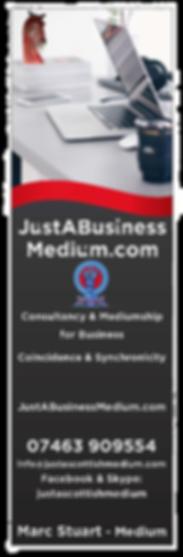 Just A Business Medium Final Vertical Lo