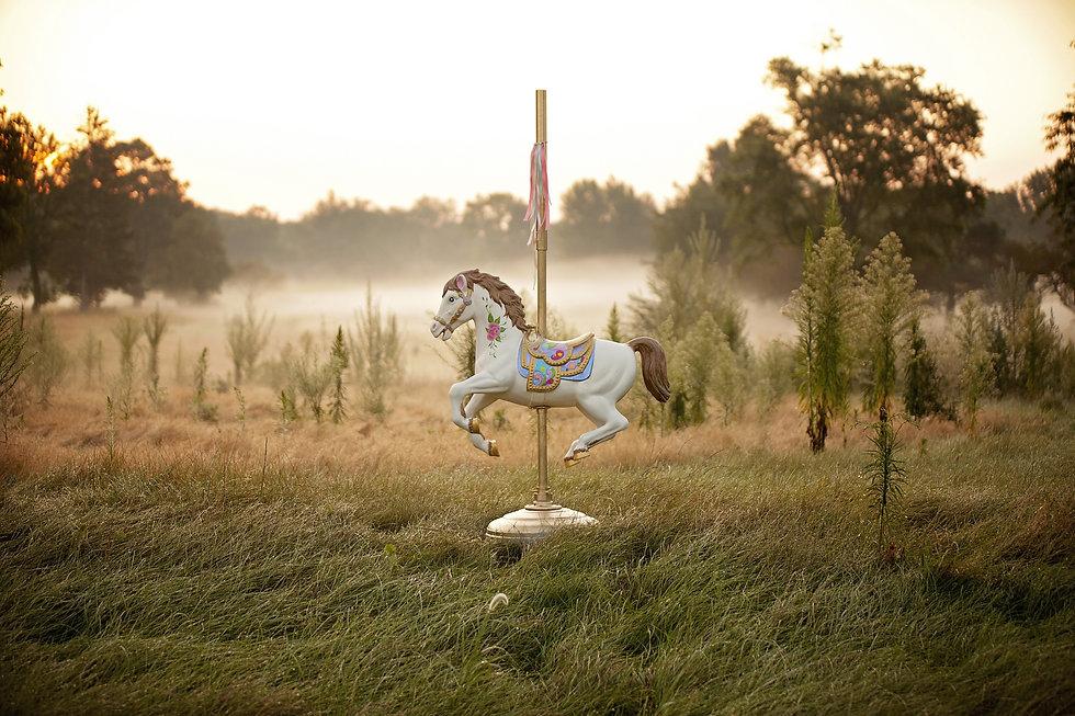 horse-1489825.jpg