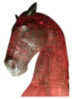 Horse 3.png