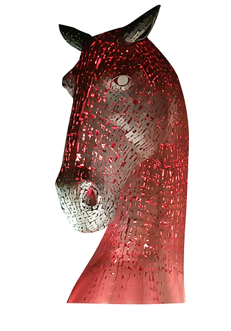 Horse 2.png