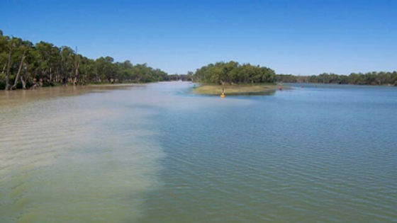 The Junction of the Murray and Darling Rivers