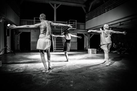 Plume de Danseurs