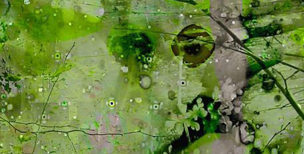 Walden-pond-1