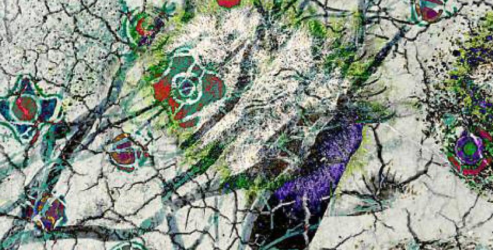 Permaculture-Soils-4