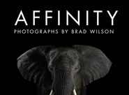 Affinity: Photographs by Brad Wilson