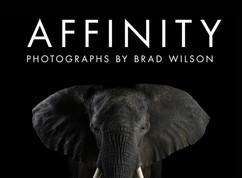 Affinity-CVR.jpg